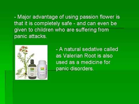 Best-Herbal-Medicine-for-Panic-Disorder