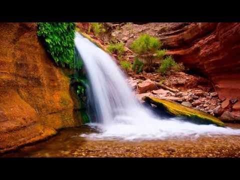 1-Hour-Meditation-Relaxing-Music-Relax-Mind-Body-and-Soul-Deep-Healing-Waves