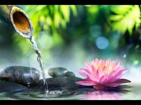 6-Hour-Zen-Meditation-Music-Calming-Music-Relaxing-Music-Soothing-Music-Relaxation-Music-2266