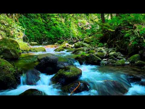 Reiki-Music-Wonderful-Nature-Sounds-with-Spiritual-Mother-Nature-for-Soothing